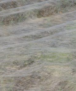 Gartenvlies-Ernteverfrühungsvlies
